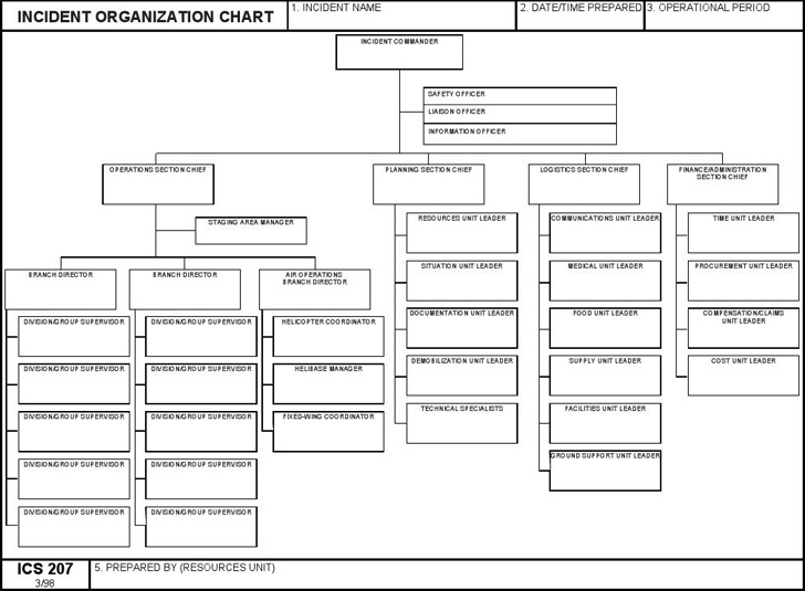 ics organizational chart download free premium templates forms samples for jpeg png pdf. Black Bedroom Furniture Sets. Home Design Ideas
