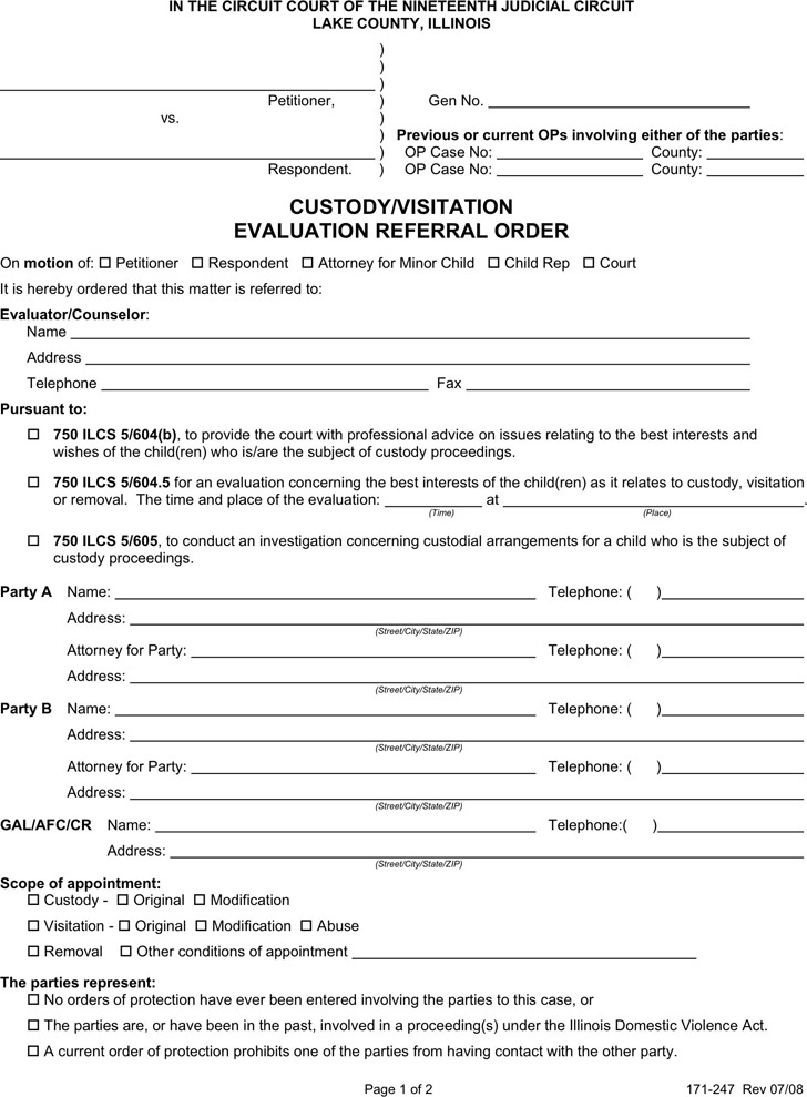 Illinois Child Custody Form