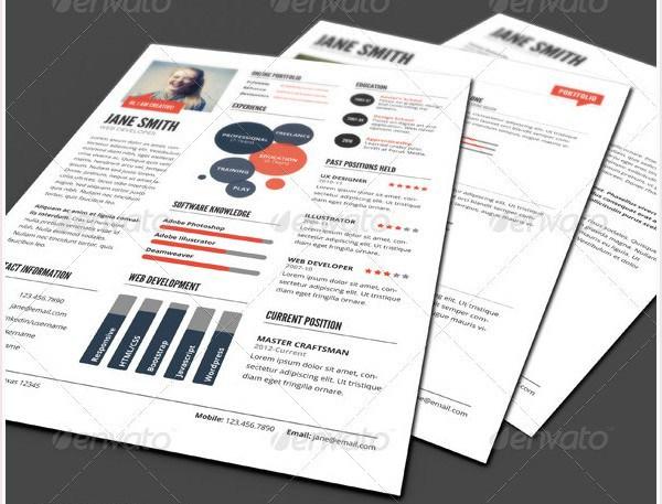 InfoGraphic Style Dark Resume Template