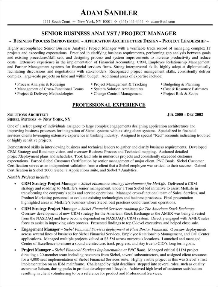 Project Manager Resume Template  Download Free  Premium