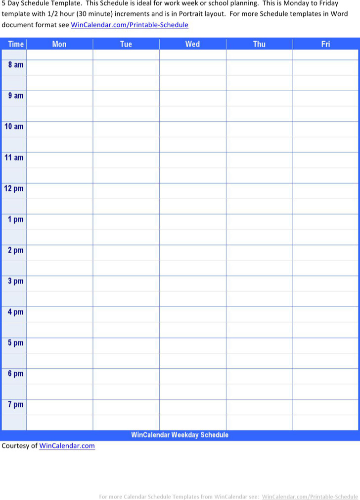 Doc428552 Daily Task Planner Template MS Excel Daily Task – Task Schedule Template