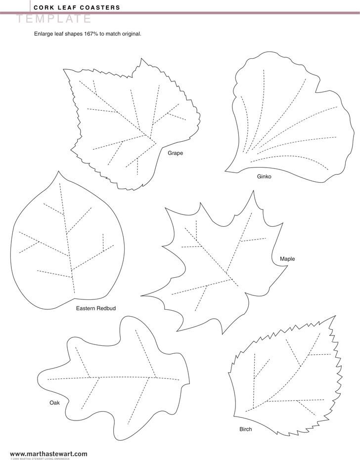 Leaf Template 1