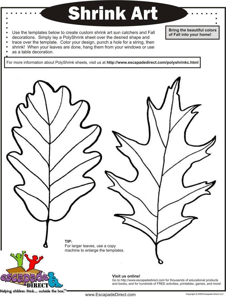 Leaf Template 2