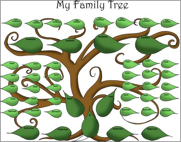 Making A Family Tree Template With Siblings
