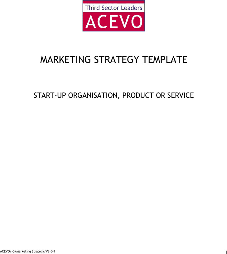 Marketing Strategy Template 3