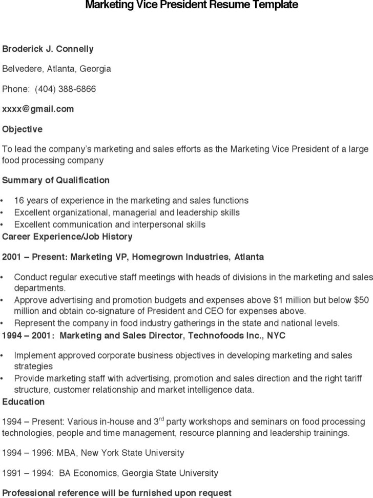 Marketing Vice President Resume Template