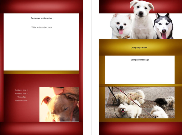 Microsoft Brochure Bifold