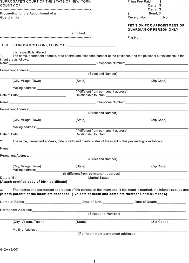 New York Guardianship Form 1
