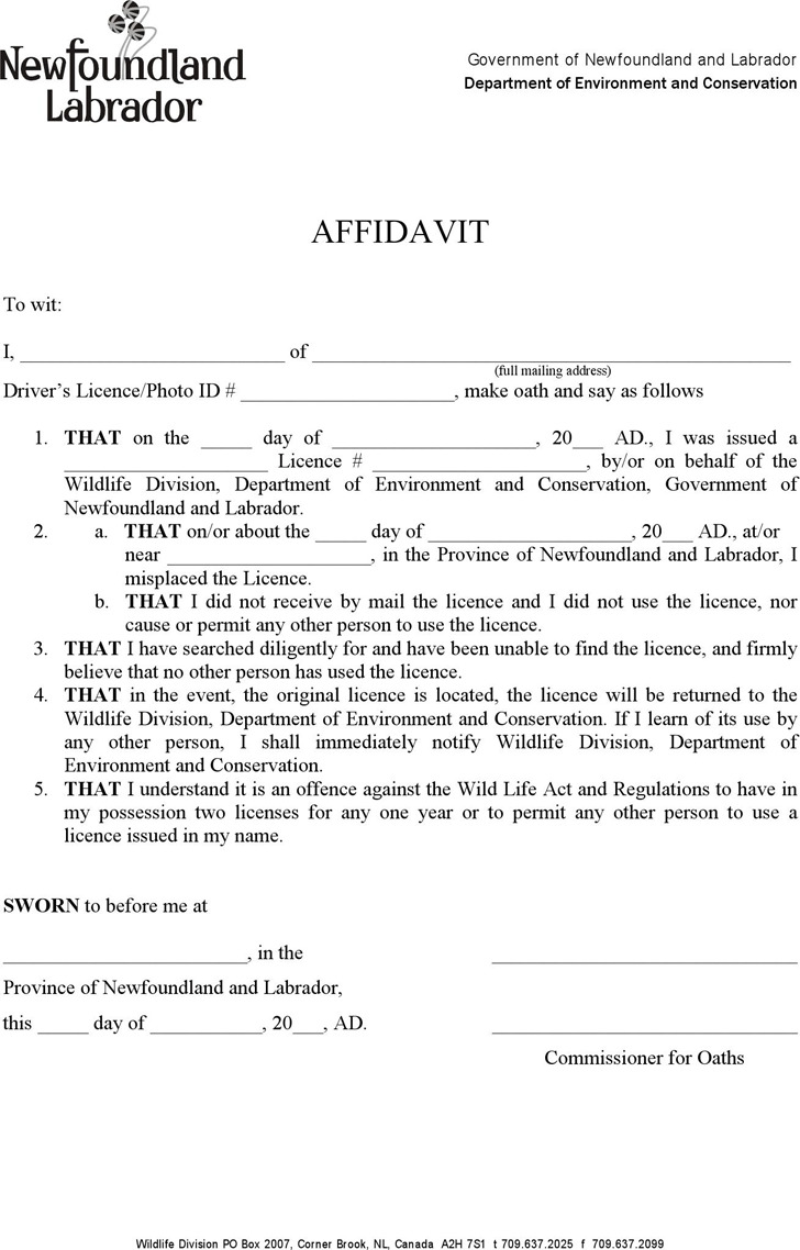 Newfoundland and Labrador Affidavit to Replace Lost Licence/Tags Form