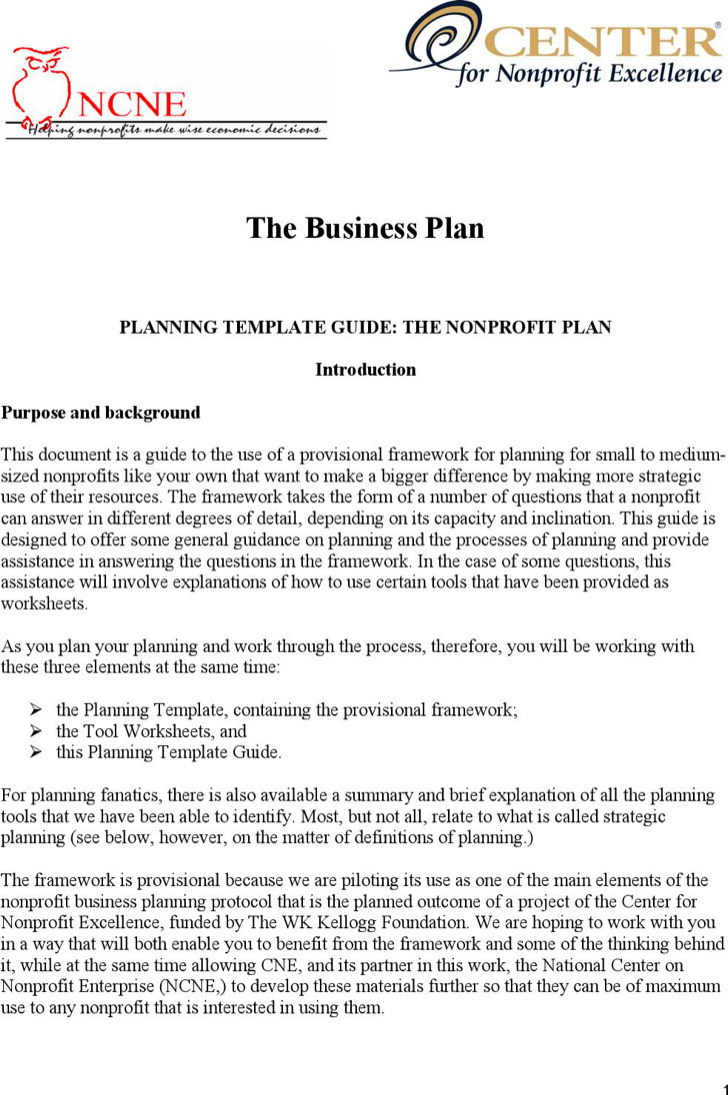 Nonprofit Business Planning Template Guide Template Pdf Download