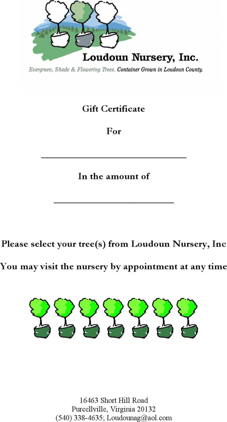 Nursery Gift Certificate Template In Word