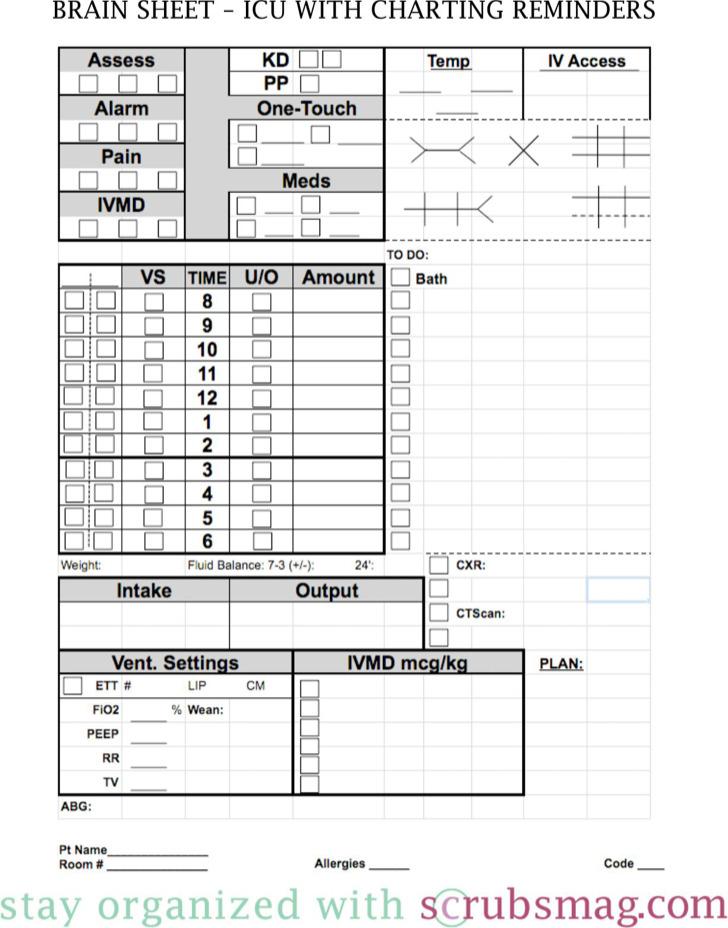 Nursing Worksheet Brain Sheet Template Download