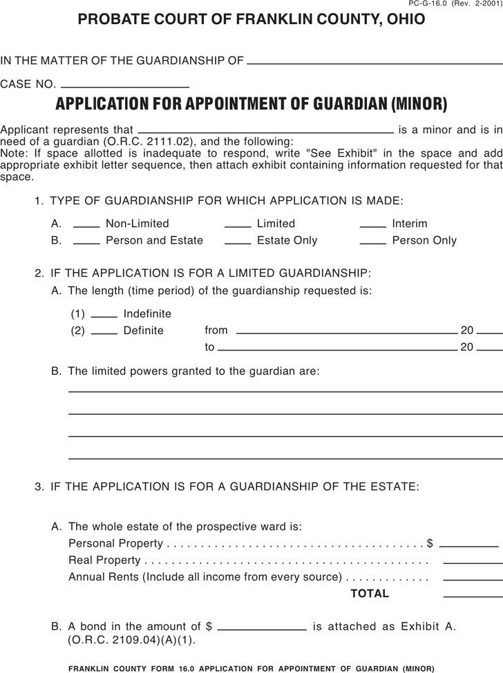 Ohio Guardianship Form 1