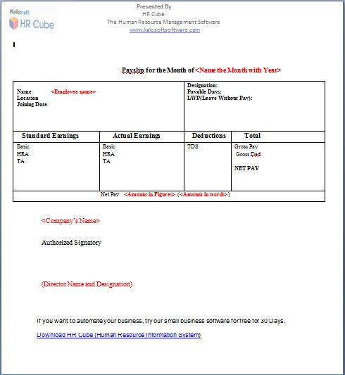Organisation Paystub Salary Template