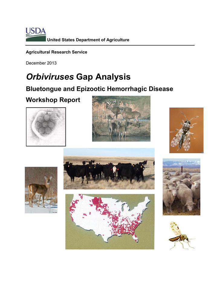 PDF Format Orbiviruses Gap Analysis Template