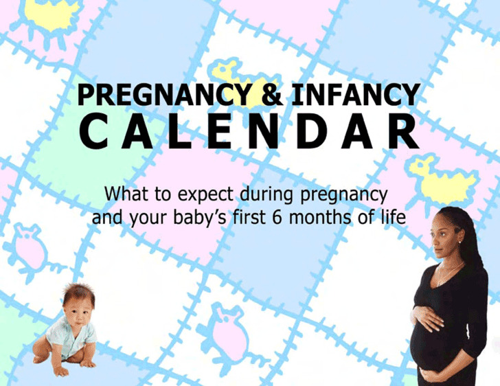 Pregnancy Calendar 3