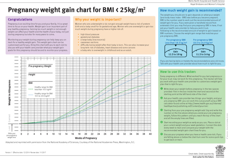 Sample Baby Weight Gain Charts  Download Free  Premium Templates