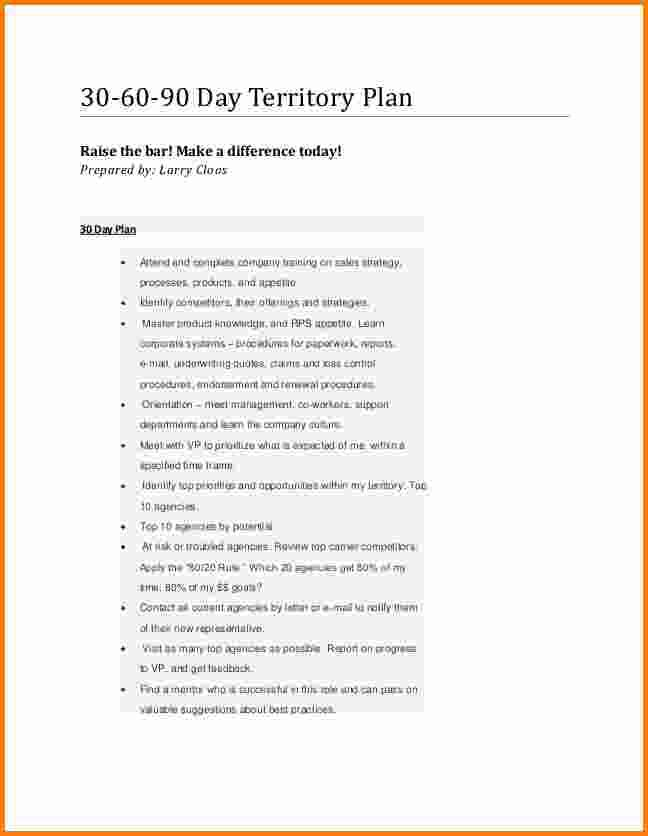 24 30 60 90 Day Plan Template Free Download