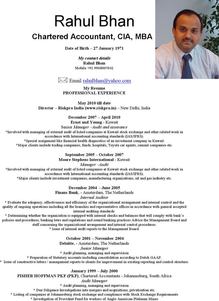 Professional Charted Accountant Resume
