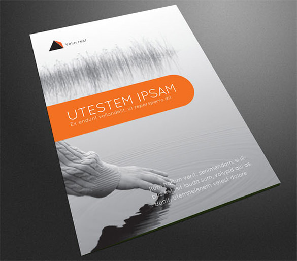 Professional Corporate Brochure Template