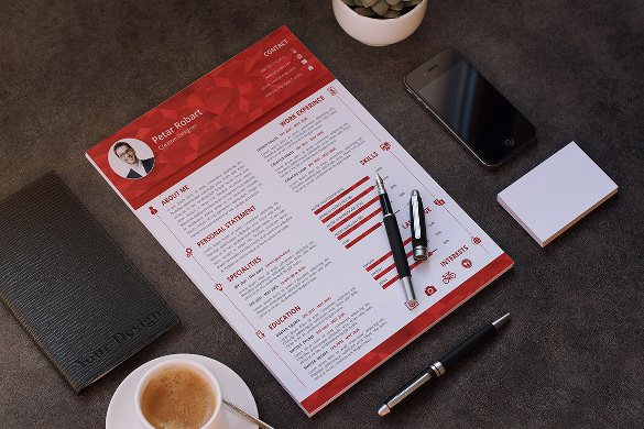 Professional Infographic Resume Template PSD Sample Download