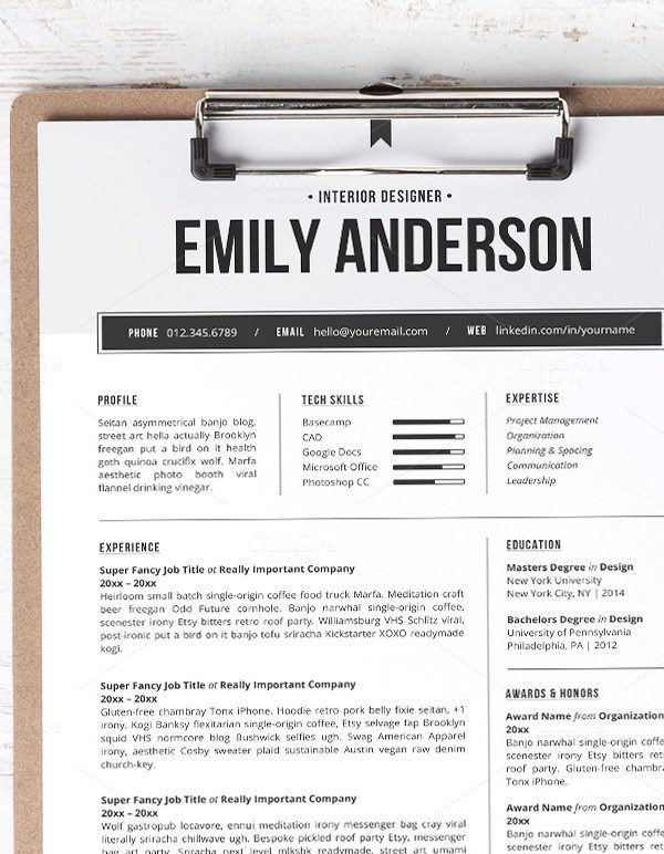 Professional Resume Template Sample