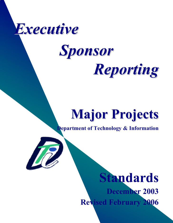 Project Executive Report