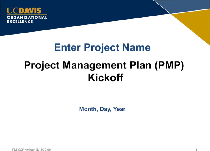 Project Presentation Templates  Download Free  Premium Templates