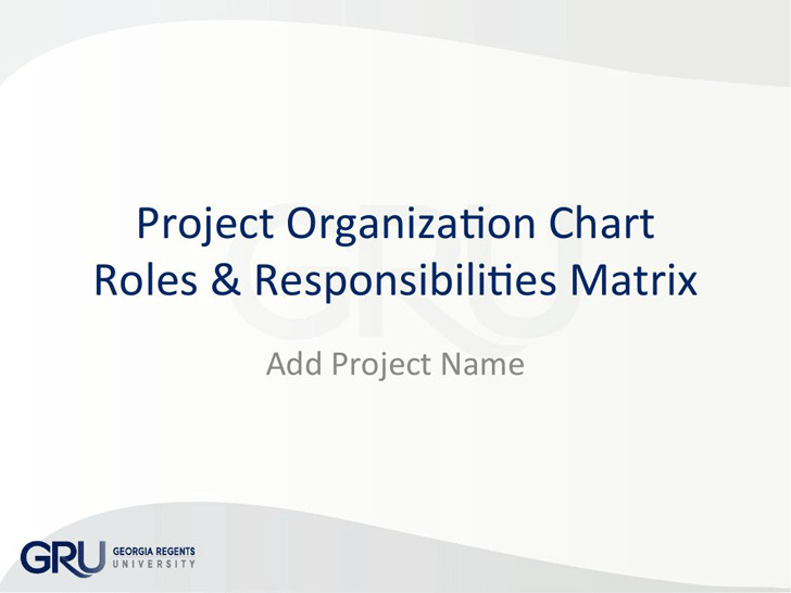 Project Organization Chart