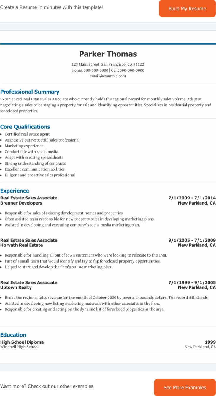 66 Sales Associate Resume Example 96 Resume Sample Sales