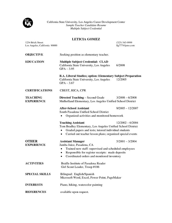 Sample Braille Teacher Resume Template