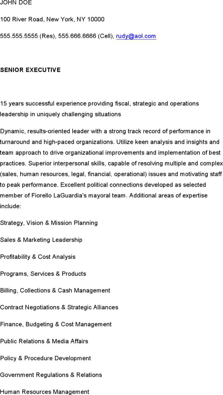 Sample Ceo And Executive Resume