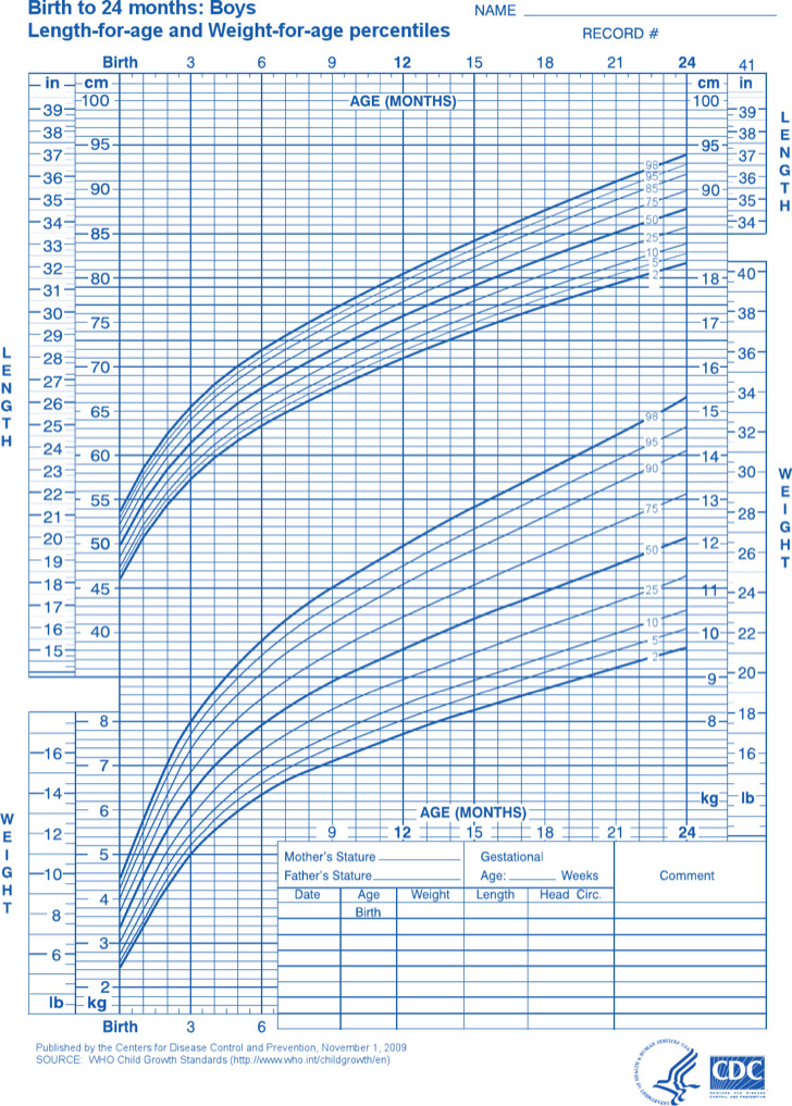 Sample Baby Weight Charts by Month | Download Free & Premium ...