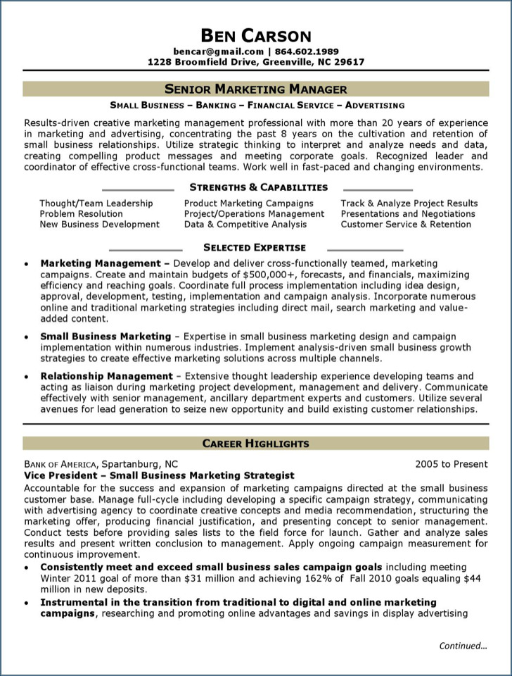 Speech Pathologist Resume Marketing Analyst Resume Template  Download Free  Premium  Microbiologist Resume Pdf with Ux Designer Resume Excel Senior Marketing Analyst Resume Free Pdf Engineering Resume Tips