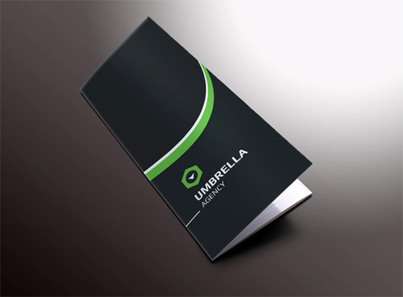 Sleek Corporate Tri-fold Brochure
