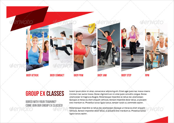 Sports  Fitness Brochures  Download Free  Premium Templates