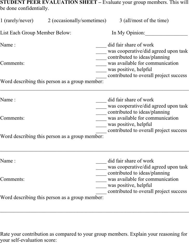 student evaluation form download student peer evaluation form
