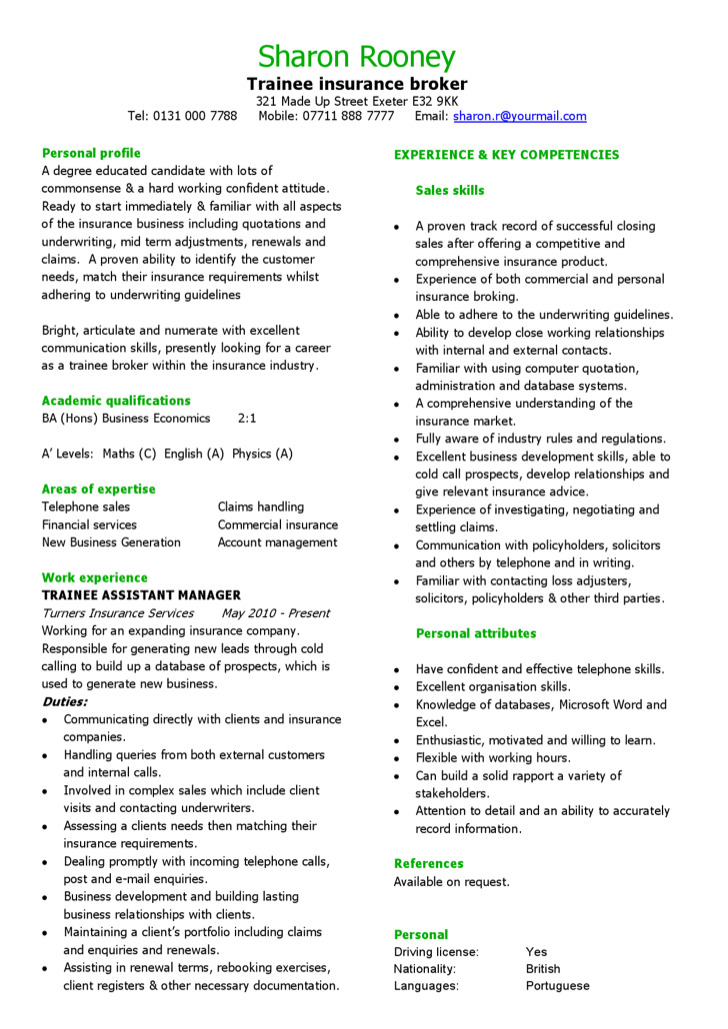 3  insurance business proposal template free download