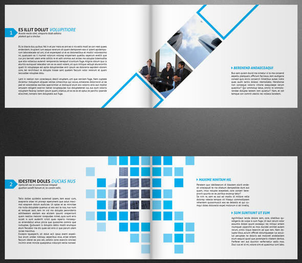 VidiQue Professional Brochure Template
