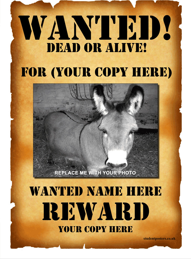 Beautiful Wanted Poster Template 1